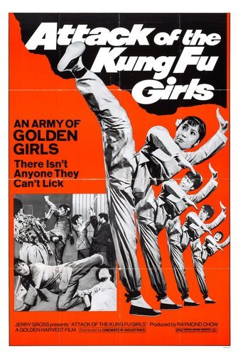 Attack Of The Kung Fu Girls Movie Poster 24Inx36In Poster by