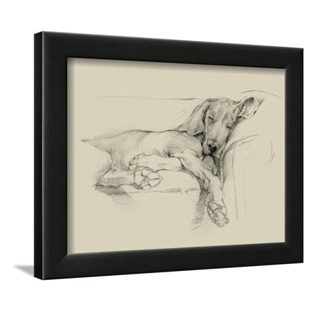 Dog Days I Framed Print Wall Art By Ethan Harper ()