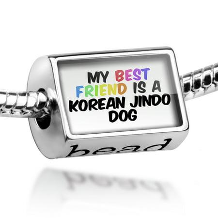 Bead My best Friend a Korean Jindo Dog from South Korea Charm Fits All European (Best Jobs In South Korea)
