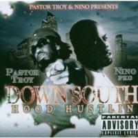 Down South Hood Hustlin (CD) (explicit)