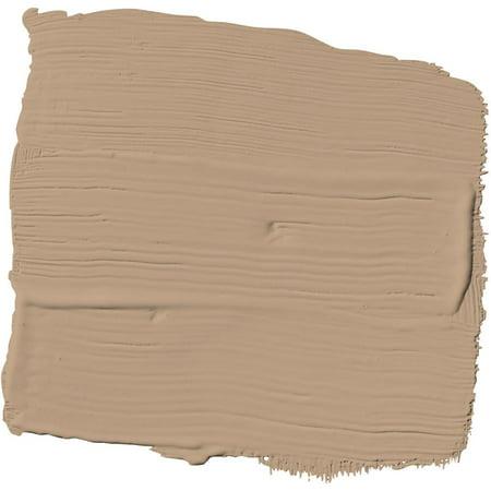Tantalizing Tan Orange Copper Paint and Primer Glidden High Endurance