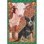 Pipsqueak Productions C998 Holiday Boxed Cards- Australian Cattle Dog