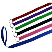 6 Foot Slip Lead, Slip Leads, Kennel Leads with O Ring for Dog Pet Animal Control Grooming, Shelter, Rescues, Vet, Veterinarian, Doggy Daycare (Various Colors) By Downtown Pet Supply