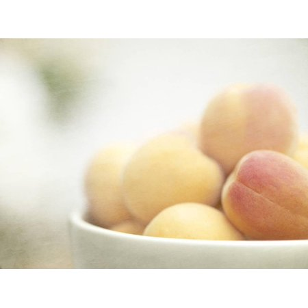 Apricots in a White Bowl Still Life Print Wall Art By Steve (Bowl Apricot)