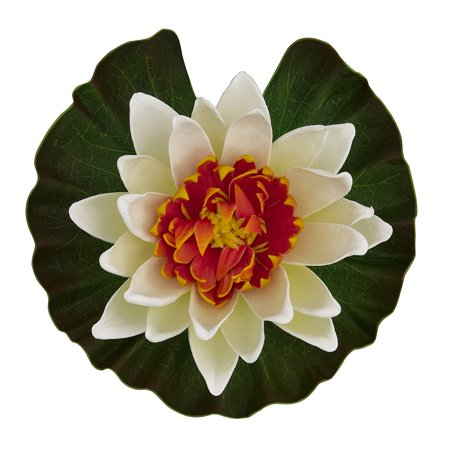 - Floating Water Lily (Colors may vary), Adds beauty to pond By Tetra Pond
