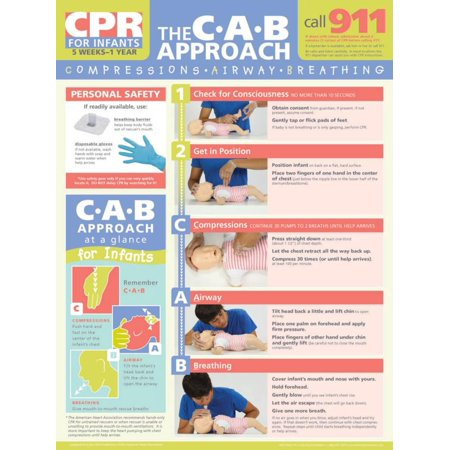 Learning Zone Poster - Infant CPR Poster Laminated Poster - 18x24