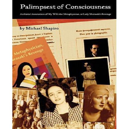 Palimpsest Of Consciousness  Authorial Annotations Of My Wife The Metaphysician  Or Lady Murasakis Revenge