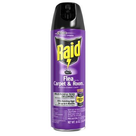 Raid Flea And Tick Killer, Carpet and Room Spray, 16 (Flea Control Carpets)