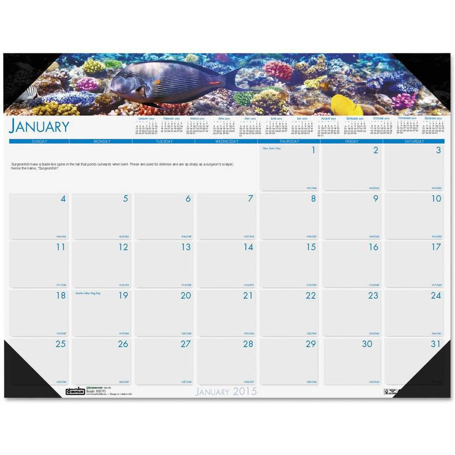 "193 House of Doolittle Earthscapes Sea Life Desk Pad Calendar - Monthly - 22"" x 17"" - 1 Year - January till December - 1 Month Single Page Layout - Leatherette, Paper - White"