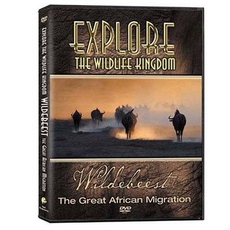Explore Life (Explore the Wildlife Kingdom: Wildebeest the Great African Migration (DVD))
