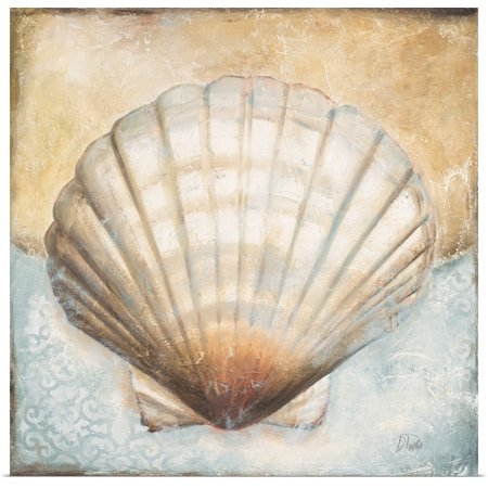 Great BIG Canvas | Rolled Patricia Pinto Poster Print entitled Seashell Collection III