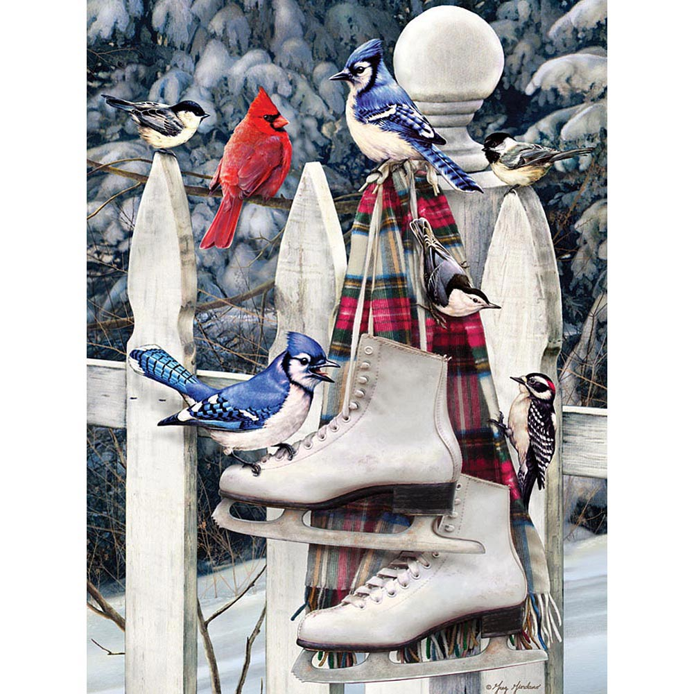Birds with Skates 500 Piece Puzzle,  Puzzles by Cobble Hill
