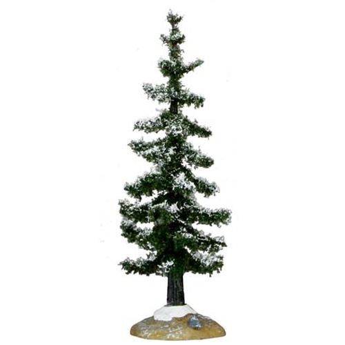 Small Blue Spruce Tree