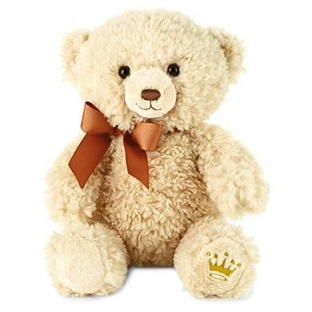 A Stuffed Animal (Hallmark Owen A Best Friend Teddy Bear Stuffed)