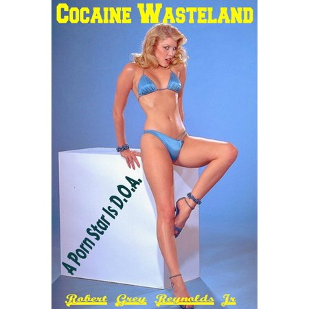 Cocaine Wasteland A Porn Star Is D.O.A. - eBook