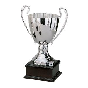 """15"""" SILVER TROPHY WITH BASE"""