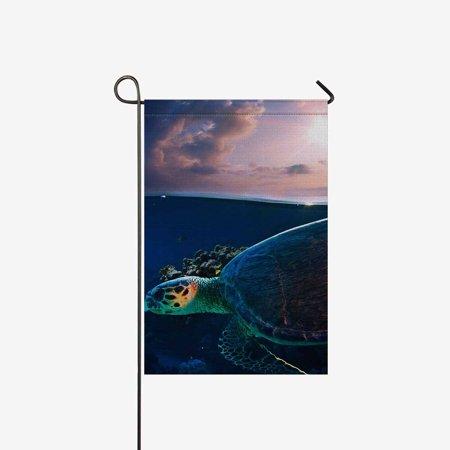 MKHERT Octopus with Magic Sphere and Goldfish Garden Flag Banner Decorative Flag for Wedding Home Outdoor Garden Decor 12x18 inch