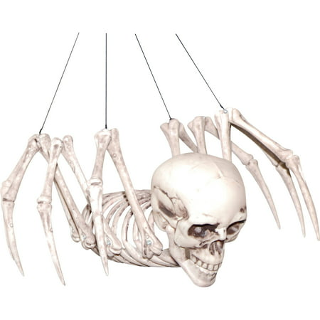 Spider Skeleton Halloween Decoration (Halloween Skeleton Head Clipart)