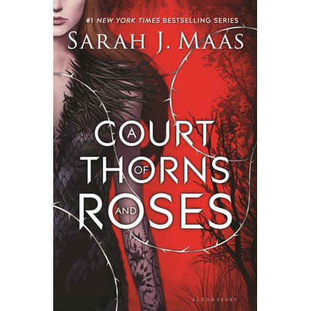 17 Crown Of Thorns (A Court of Thorns and Roses)