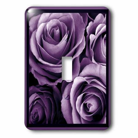 3dRose Close up of dreamy lavender purple rose bouquet - Single Toggle