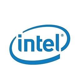 Intel Motherboard DBS1200SPLR Silver Pass Server Board Single Retail