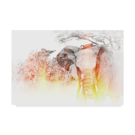 Trademark Fine Art Golden Elephant Canvas By Golie Miamee
