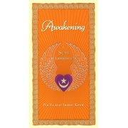 Awakening : A Sufi Experience