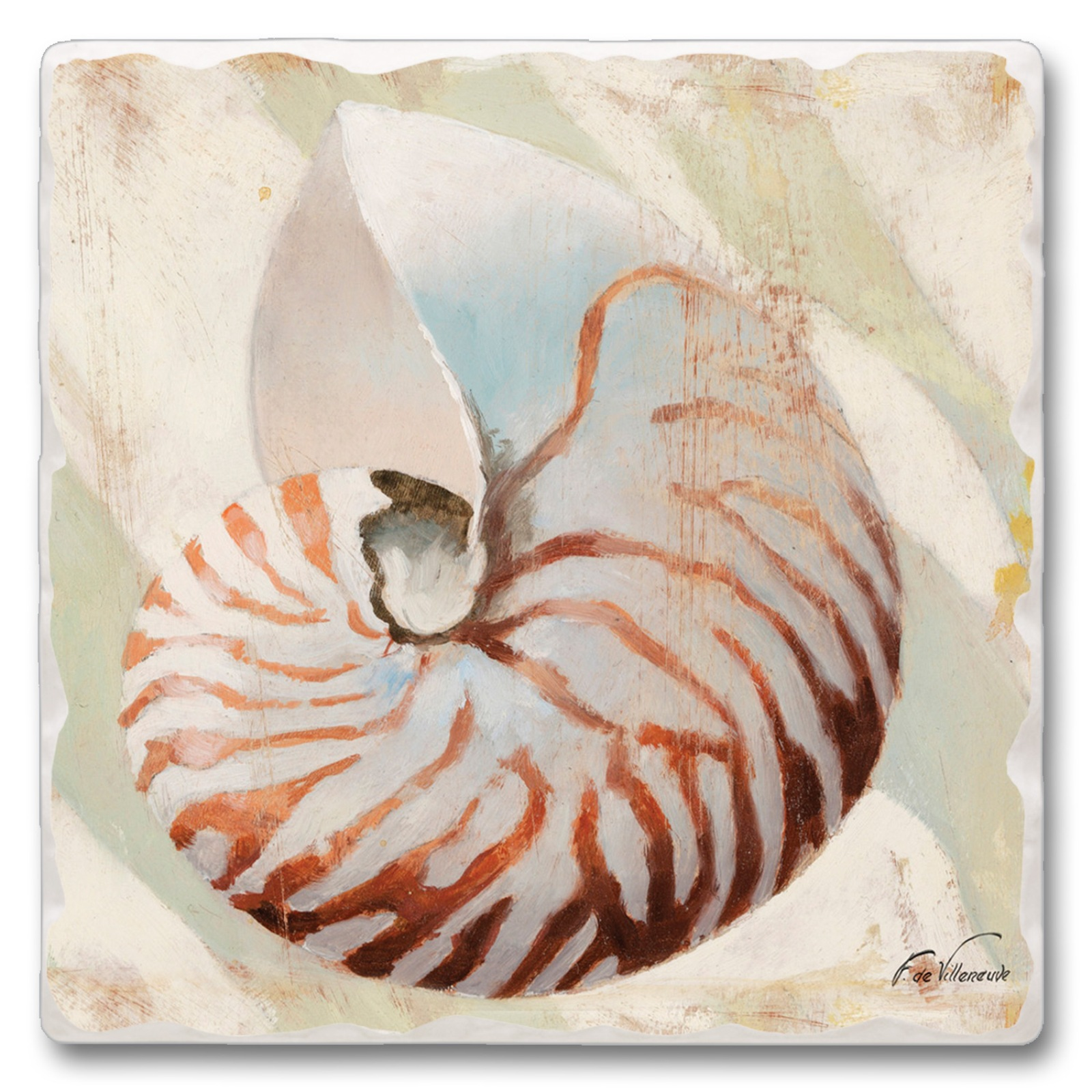Nautilus Shell Reef Kitchen Dining Room Absorbent Stone Trivet