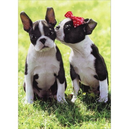 Avanti Press Kissing Boxers Dog Valentine's Day Card Boxer Dog Note Card