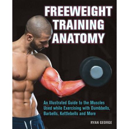 Freeweight Training Anatomy : An Illustrated Guide to the Muscles Used While Exercising with Dumbbells, Barbells, and Kettlebells and