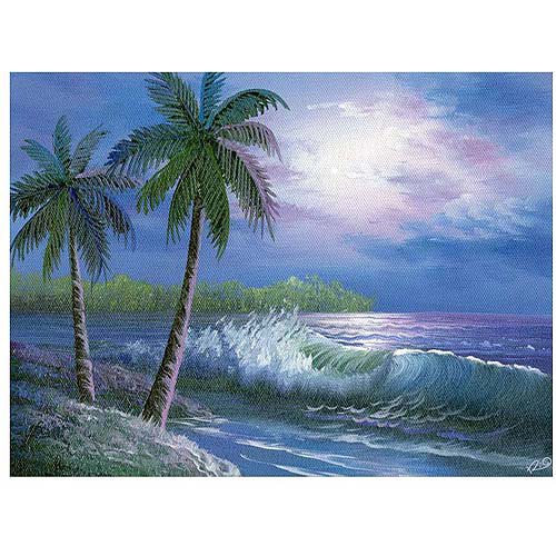 "Trademark Fine Art ""Moonlight in Key Largo"" Canvas Art"