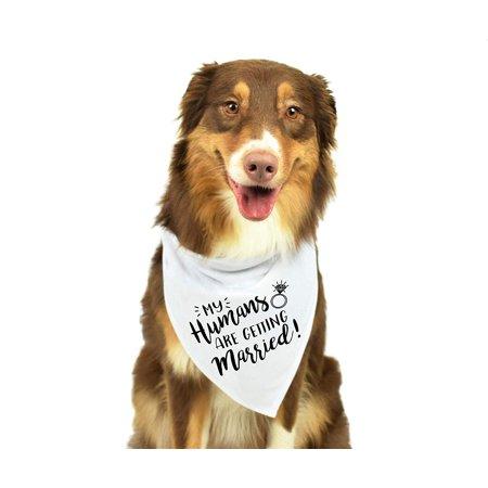 Reactionnx Wedding Dog Bandana, Dog Bandana Wedding, Best Dog Bandana?Wedding Photo Prop, Pet Scarf, Pet