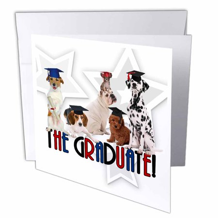 3dRose Pack of Dogs in Cap and Gowns for the Graduate., Greeting Cards, 6 x 6 inches, set of - Cap And Gown For Preschool
