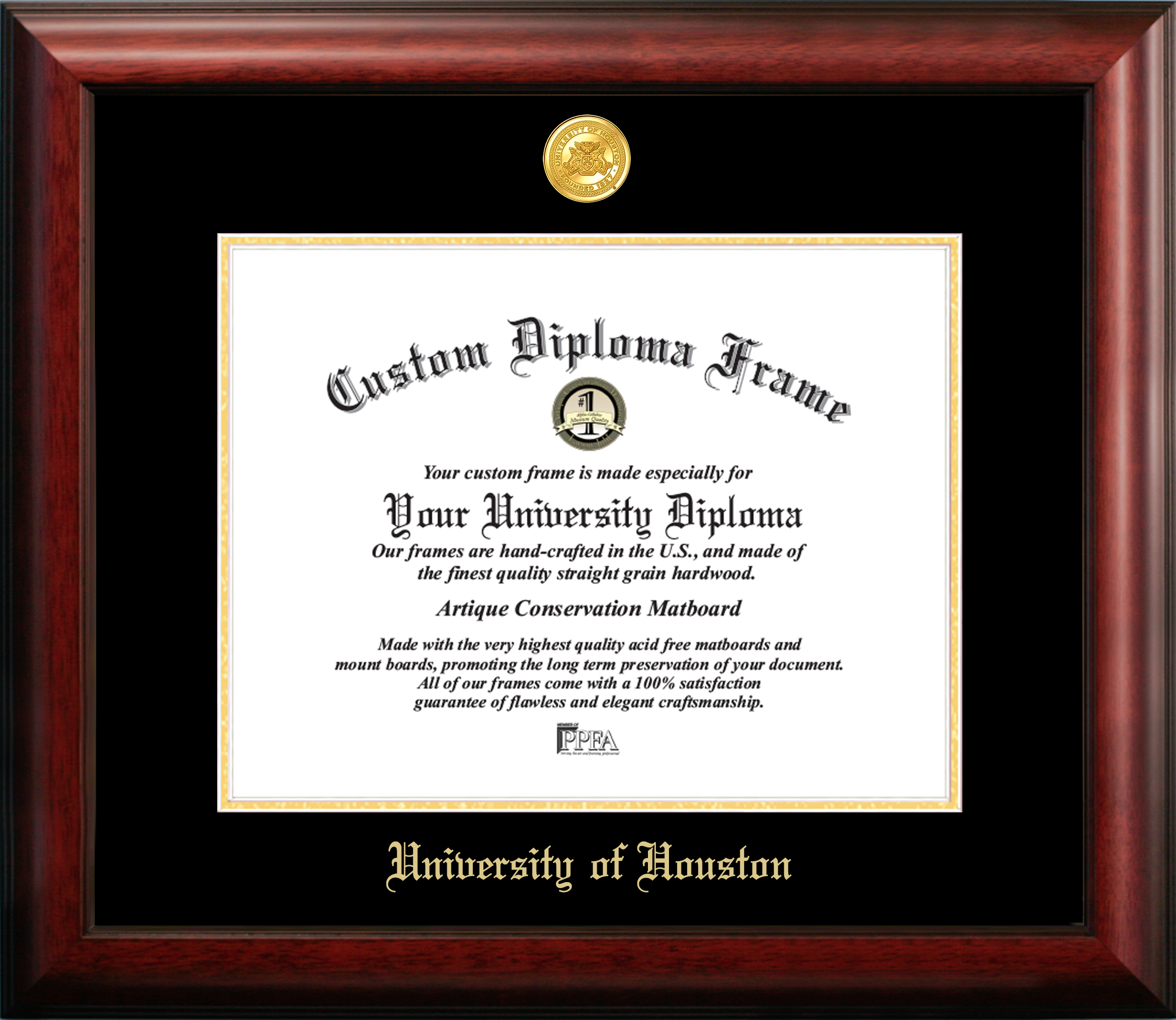 Beautiful Diploma for a Dinosaur lover,..great conversation piece great gift!