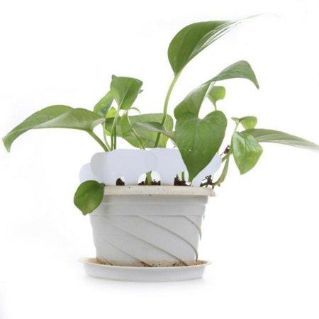 Waterproof Flower Pot - 100pcs Tags for Gardening Plant T Shape Waterproof Tags Flower Vegetable Planting Label Tools Garden Tray Lids