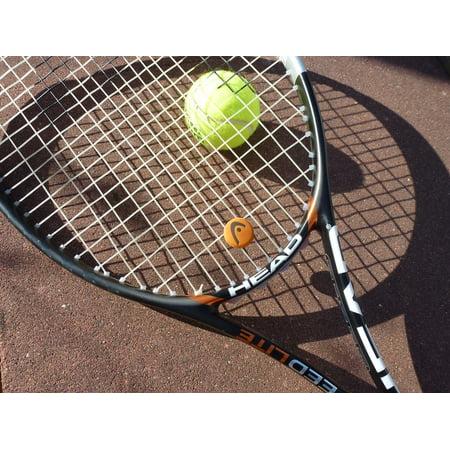 Canvas Print Tennis Ball Tennis Tennis Racket Play Tennis Sport Stretched Canvas 10 x 14