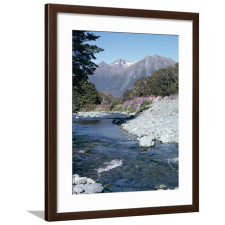 Cascade Creek and Stuart Mountains, South Island, New Zealand Framed Print Wall Art By Ian Griffiths