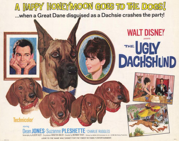 Image result for the ugly dachshund (1966)