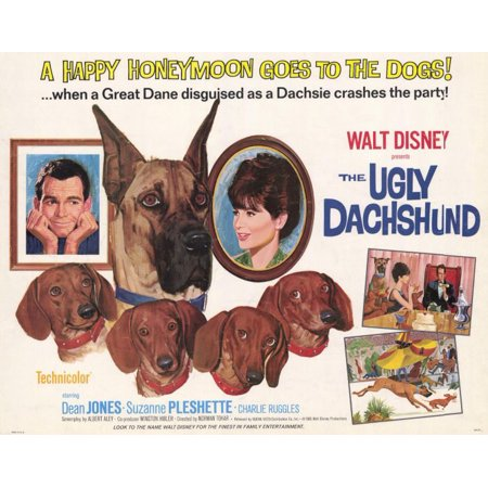 The Ugly Dachshund (1966) 11x14 Movie Poster](1966 Batman Movie Poster)