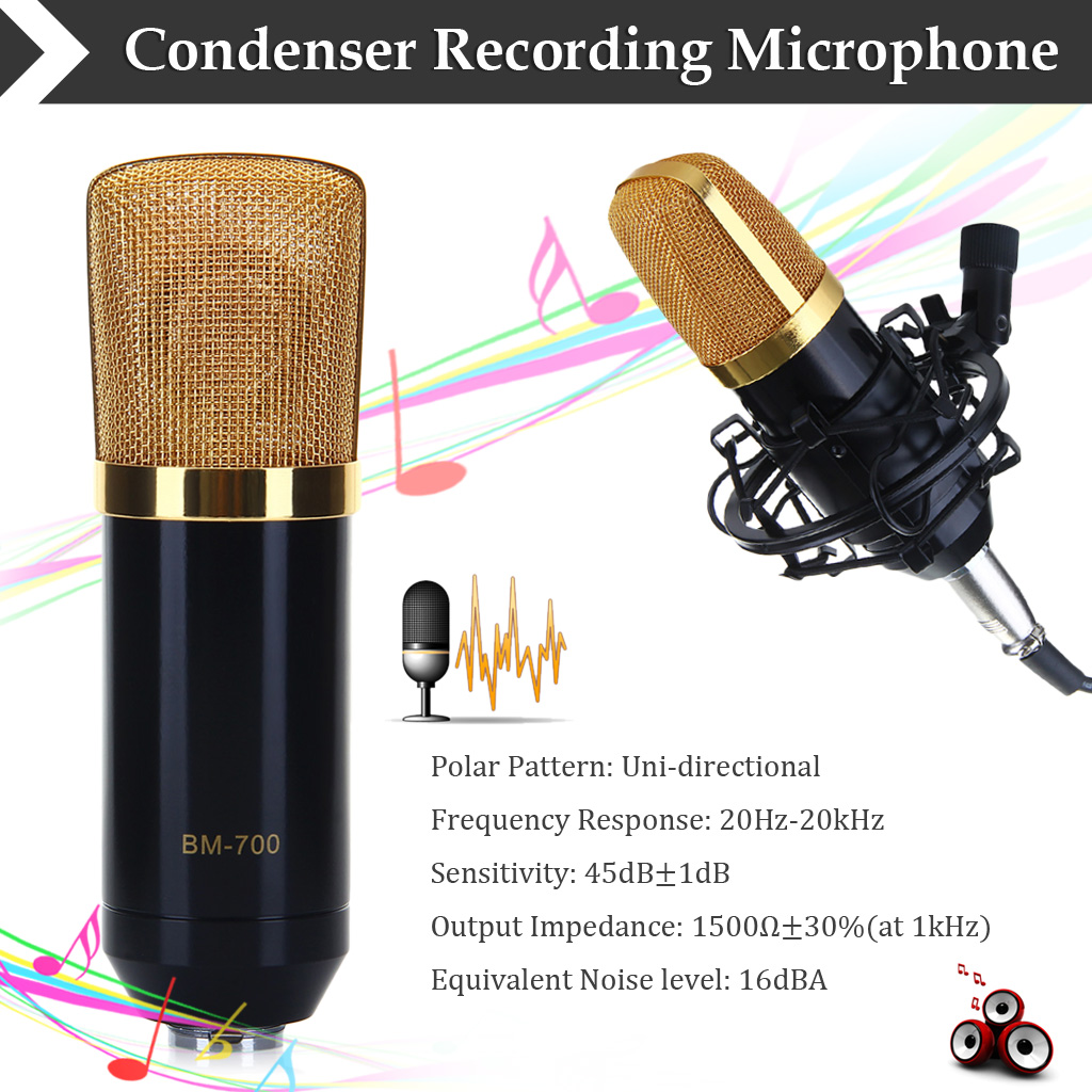 Professional Condenser Microphone BM-700 Mic Studio Sound Recording Shock Mount Black by