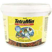 Tetra TetraMin Balanced Diet Tropical Fish Food Flakes, 4.52 lb