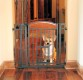Carlson Design Studio Metal Walk-Thru Gate with Pet Door - Design Studio Decor line - with auto-close walk-thru door