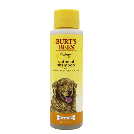 Burts bees oatmeal dog shampoo, 16-oz bottle