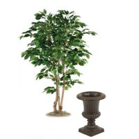 5 ft. Green Ficus Tree in 15 in. Rust Classic Fiberglas Urn