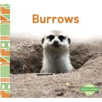 Burrows (Paperback)