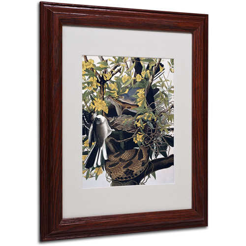 "Trademark Fine Art ""Mocking Birds and Snake"" Canvas Art by John James Audubon, Wood Frame"