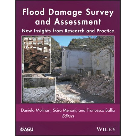 Flood Damage Survey And Assessment