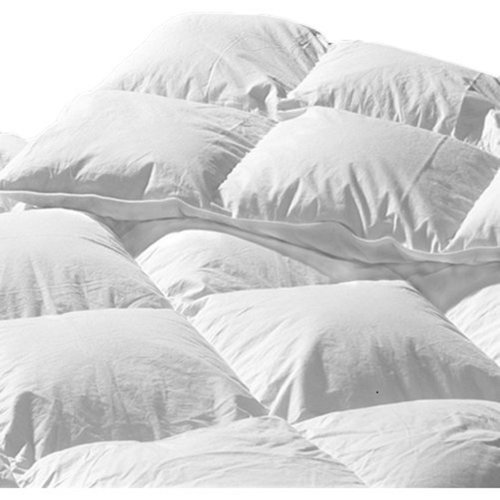Highland Feather Brittany Heavyweight Down Comforter