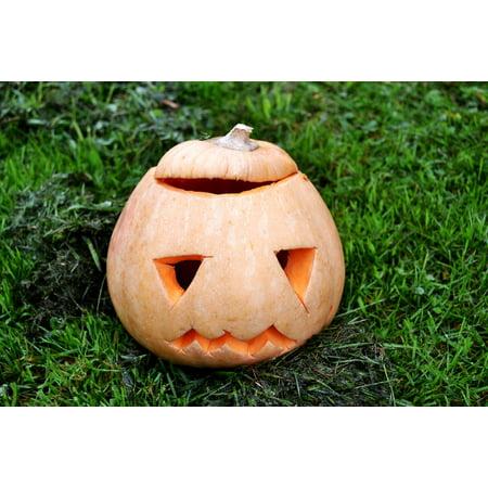 Framed Art For Your Wall Halloween Pumpkin Squash Jack-o-lantern 10x13 - Pumpkin Squash For Halloween