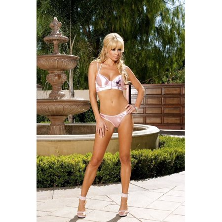Elegant Moments  EM-5372 Cute Satin Camisole and matching Panty Set L / Pink - Camisole De Force Halloween